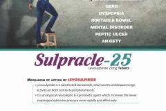 VISUAL AID PDF-page-042